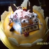蛋糕产品展示9-喀什香曲尔