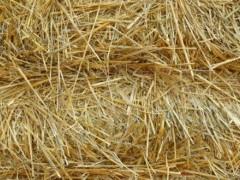 农业废杆环保处理