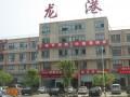 龙港钢材城-项目经典成功案例
