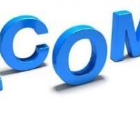 paydai.com稀有金融类域名