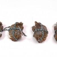 万年红大闸蟹公蟹3-3.3两母蟹2-2.3两5对礼盒