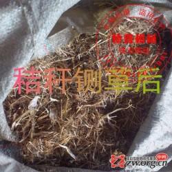 畜牧 养殖业 多功能铡草粉碎设备 干湿铡草粉碎机 热销铡草机