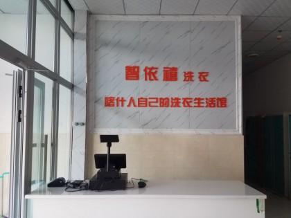 新疆智依禧前台形象墙