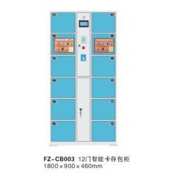 FZ-CB003-12门智能卡存包柜-喀什办公家具,喀什方正办公家具