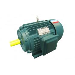 山东盛华电机厂YE2 180S四极18.5千瓦三相异步电动机