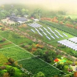 生态农牧业