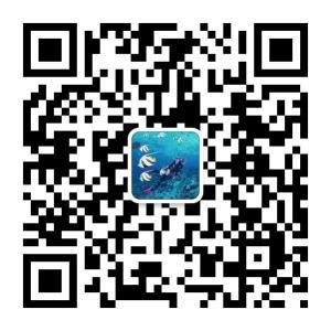 潜水世界二维码账号:diveworld